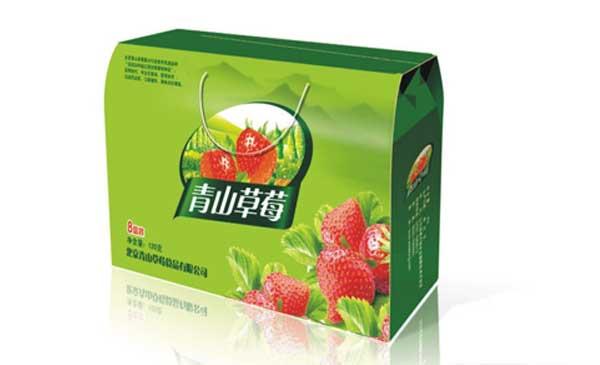 水果彩箱19